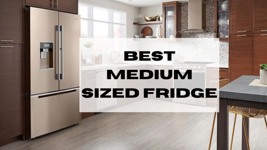 Best Medium Sized Fridge [List 2020]