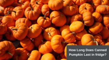 how long does canned pumpkin last in fridge