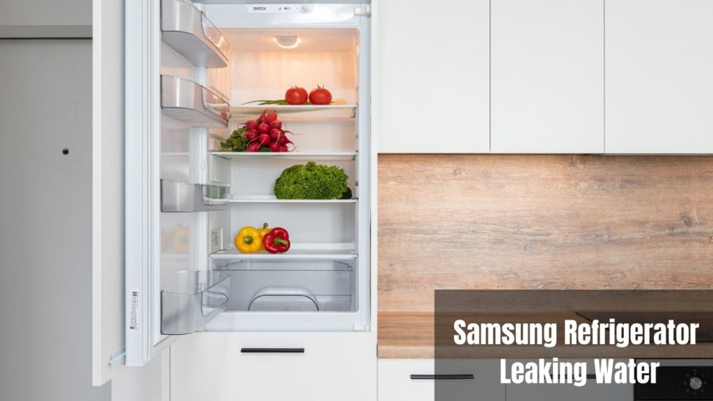 Samsung Refrigerator Leaking Water 【How to Fix】